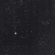 50 Serviettes DNL noir brillant, 40 x 40, 1/4