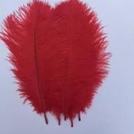 Sachet de 5 plumes d'autruche, 20 x 25 cm cm, rouge