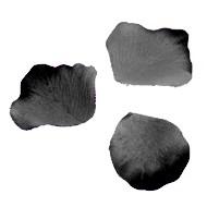 Pétales, 100 pièces, noir